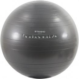 Stanno Yoga Ball 75 cm aus...