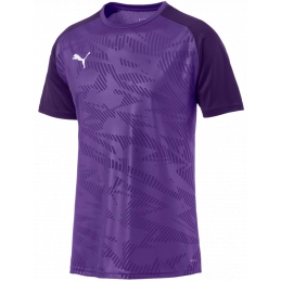 Puma Cup Training Jersey Core