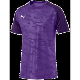 Puma Cup Training Jersey Core