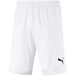 Puma Cup Junior Shorts...