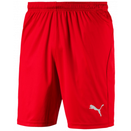 Puma Liga Junior Shorts...