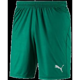 Puma Liga Junior Shorts...