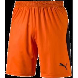 Puma Liga Shorts Kurze...