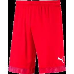 Puma Cup Junior Shorts in...