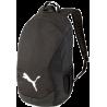 TeamFinal 21 Backpack in puma black