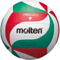 Volleybälle (Spiel- und Training)
